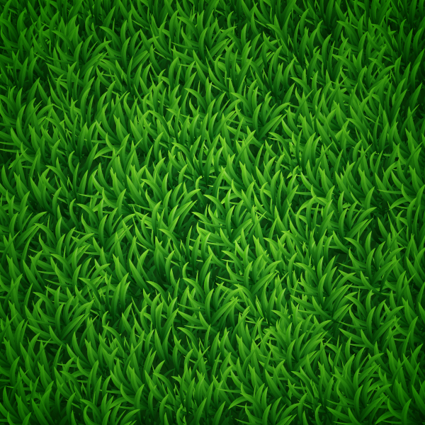 Japanese Hand Painted Grass Wallpaper