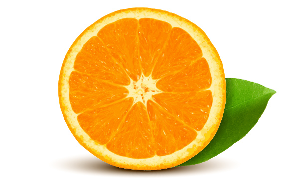 Realistic Vector Orange