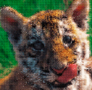 How to Create a Cross-Stitch of a Picture in Adobe Illustrator