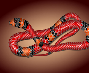 Adobe Illustrator Tutorial: How to Create a Vector Snake Using Mesh Tormentor