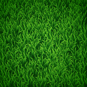 How to Create Vector Grass Background in Adobe Illustrator