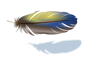 How to Create a Realistic Vector Feather Using Adobe Illustrator