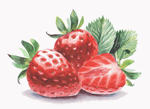 VectorFirstAid – Help Reduce Illustrator File Size