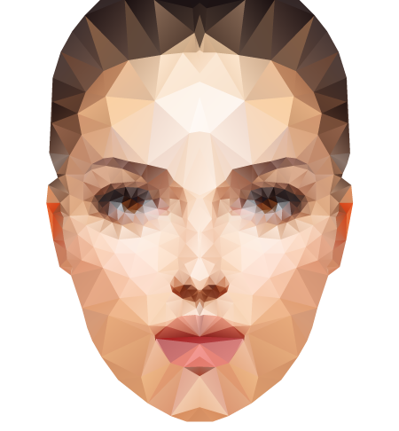 create polygonal portrait using Triangulator and MirrorMe